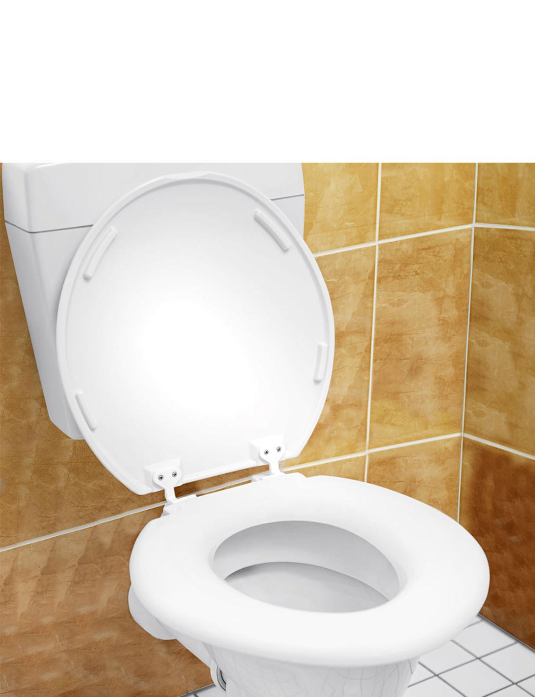 Extra Large Toilet Seat EBay